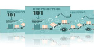 dropshipping success videos